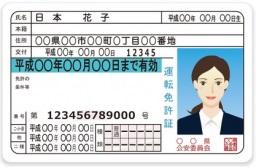 Japanese driver license